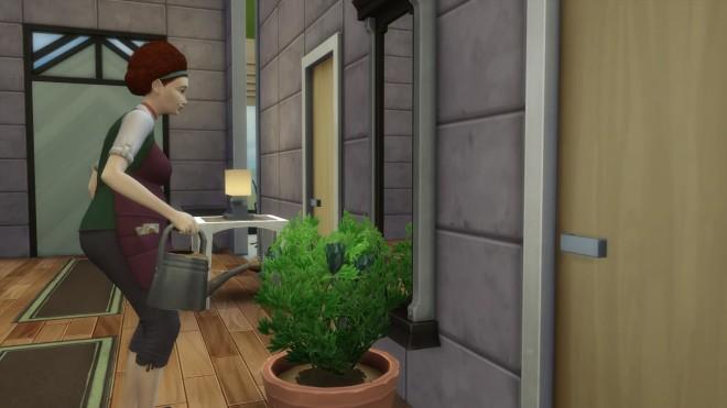 Sims 4 Gardener